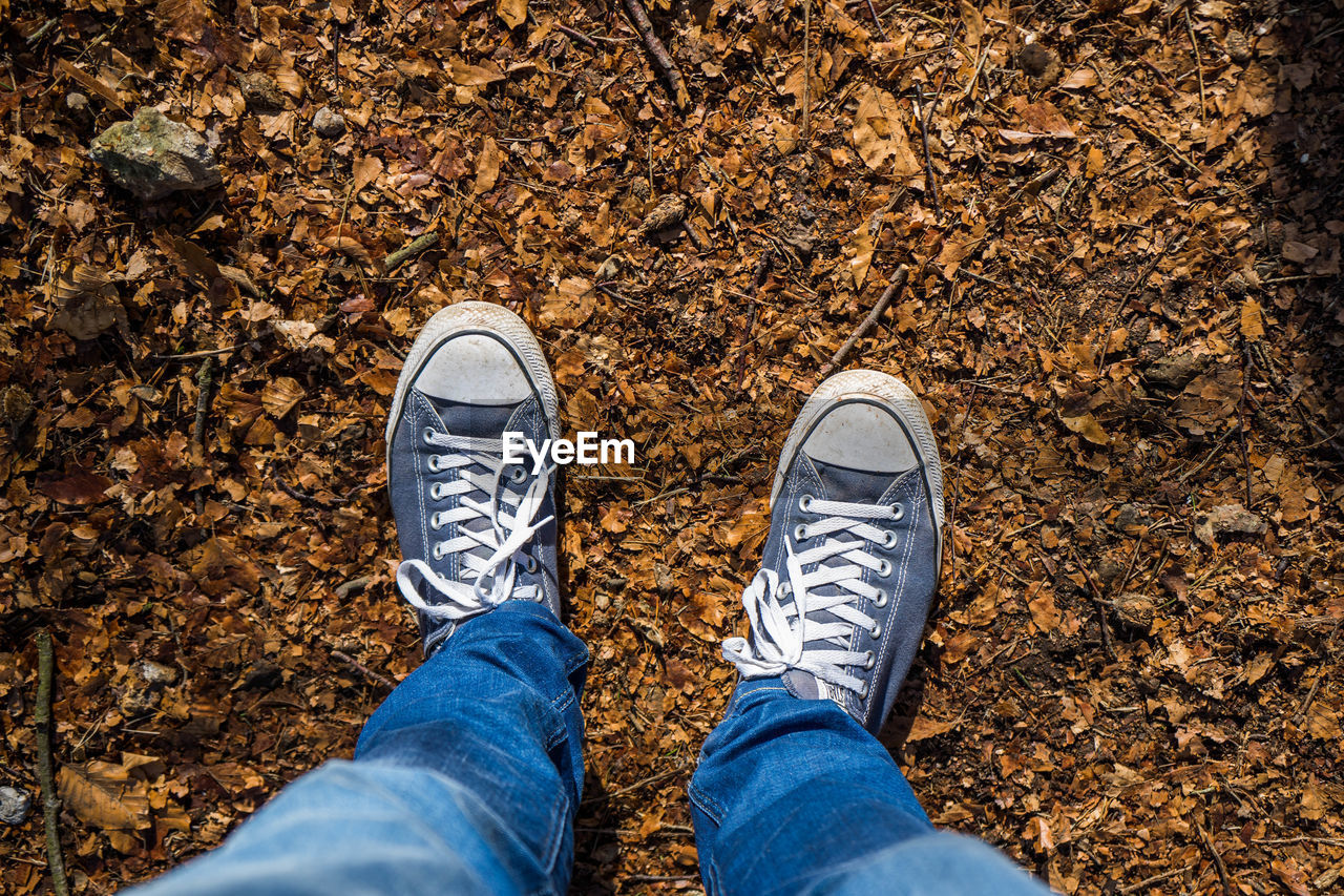 low section, shoe, human leg, human body part, body part, personal perspective, one person, real people, high angle view, lifestyles, jeans, standing, unrecognizable person, casual clothing, day, directly above, nature, leisure activity, canvas shoe, outdoors, change, human foot, human limb, leaves