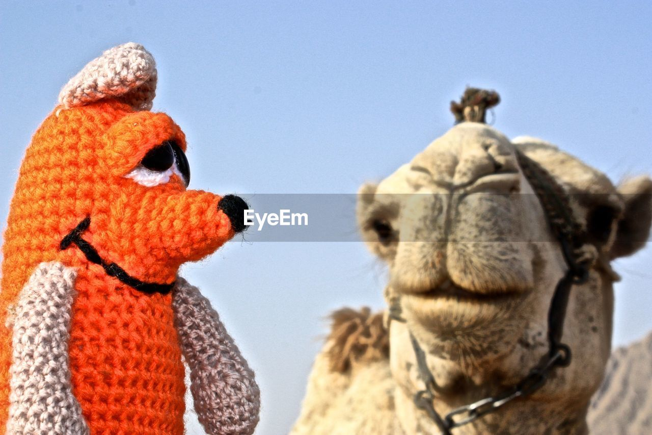 Close-Up Of Orange Woolen Toy With Camel Against Sky