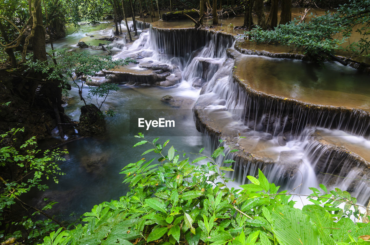 water, motion, nature, beauty in nature, plant, waterfall, scenics - nature, tree, flowing water, forest, long exposure, no people, environment, river, blurred motion, growth, flowing, day, land, outdoors, stream - flowing water, falling water, power in nature, rainforest
