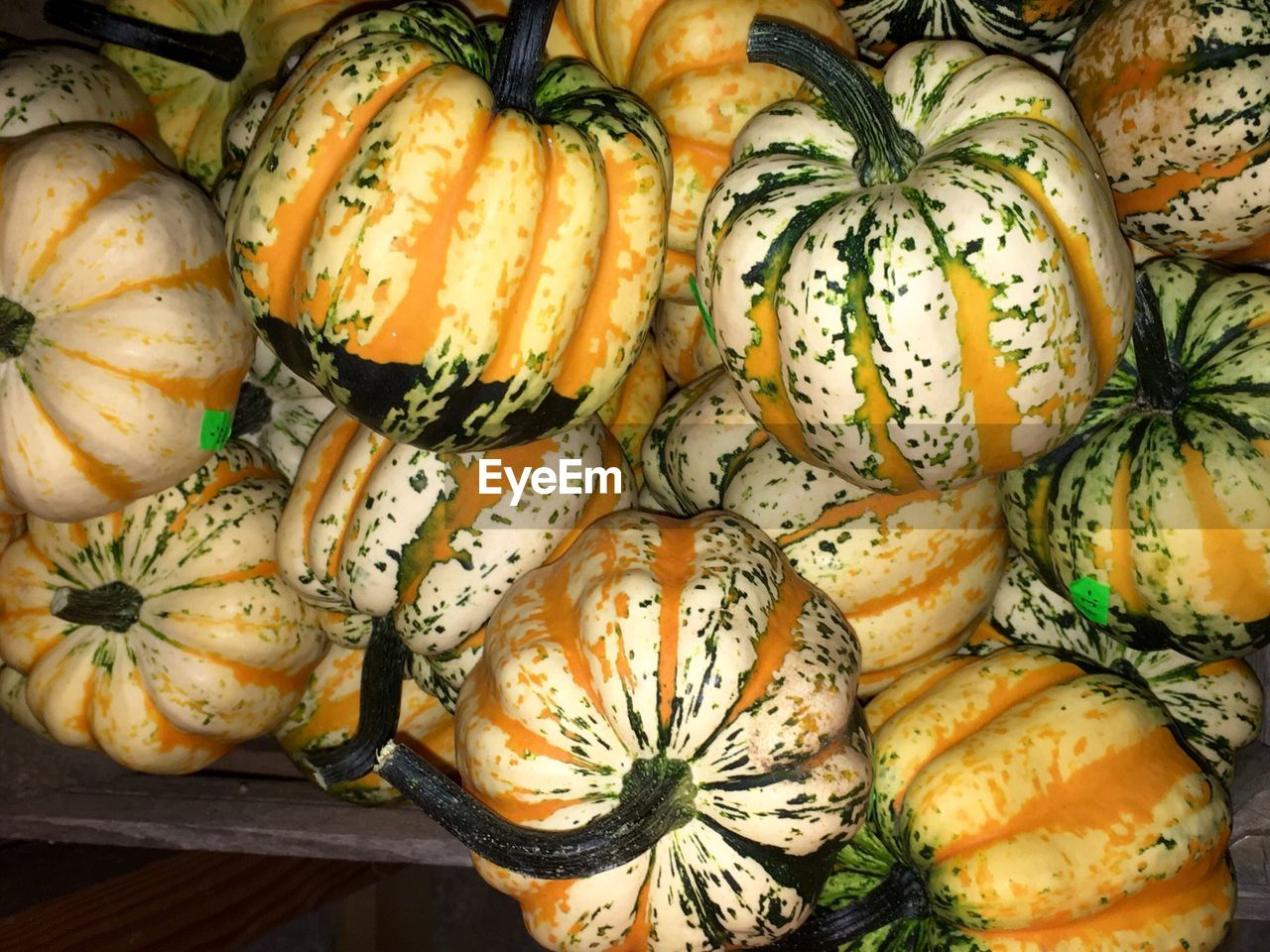 food and drink, food, freshness, healthy eating, wellbeing, vegetable, no people, still life, pumpkin, squash - vegetable, close-up, high angle view, backgrounds, full frame, gourd, for sale, orange color, indoors, market, raw food, ripe, herb