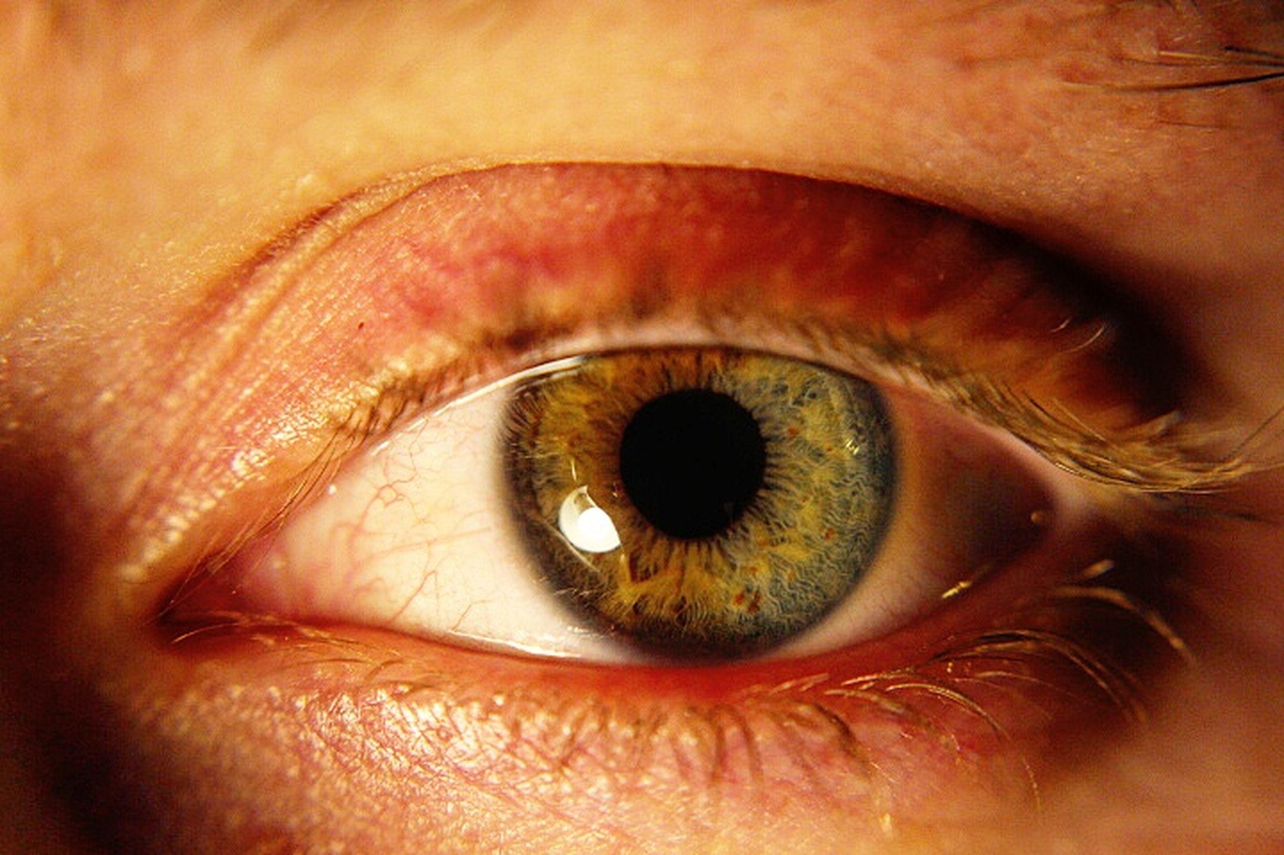human body part, human eye, eyesight, real people, eyelash, sensory perception, one person, close-up, iris - eye, eyeball, vision, people, outdoors, day, adult