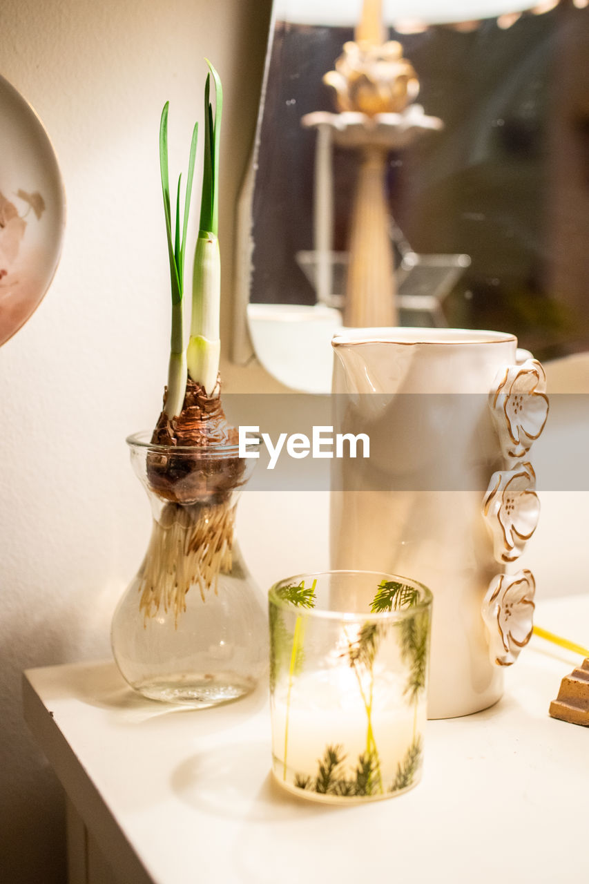 table, no people, indoors, food and drink, food, freshness, nature, still life, close-up, plant, container, focus on foreground, drink, glass - material, potted plant, refreshment, transparent, candle, vase, herb, glass