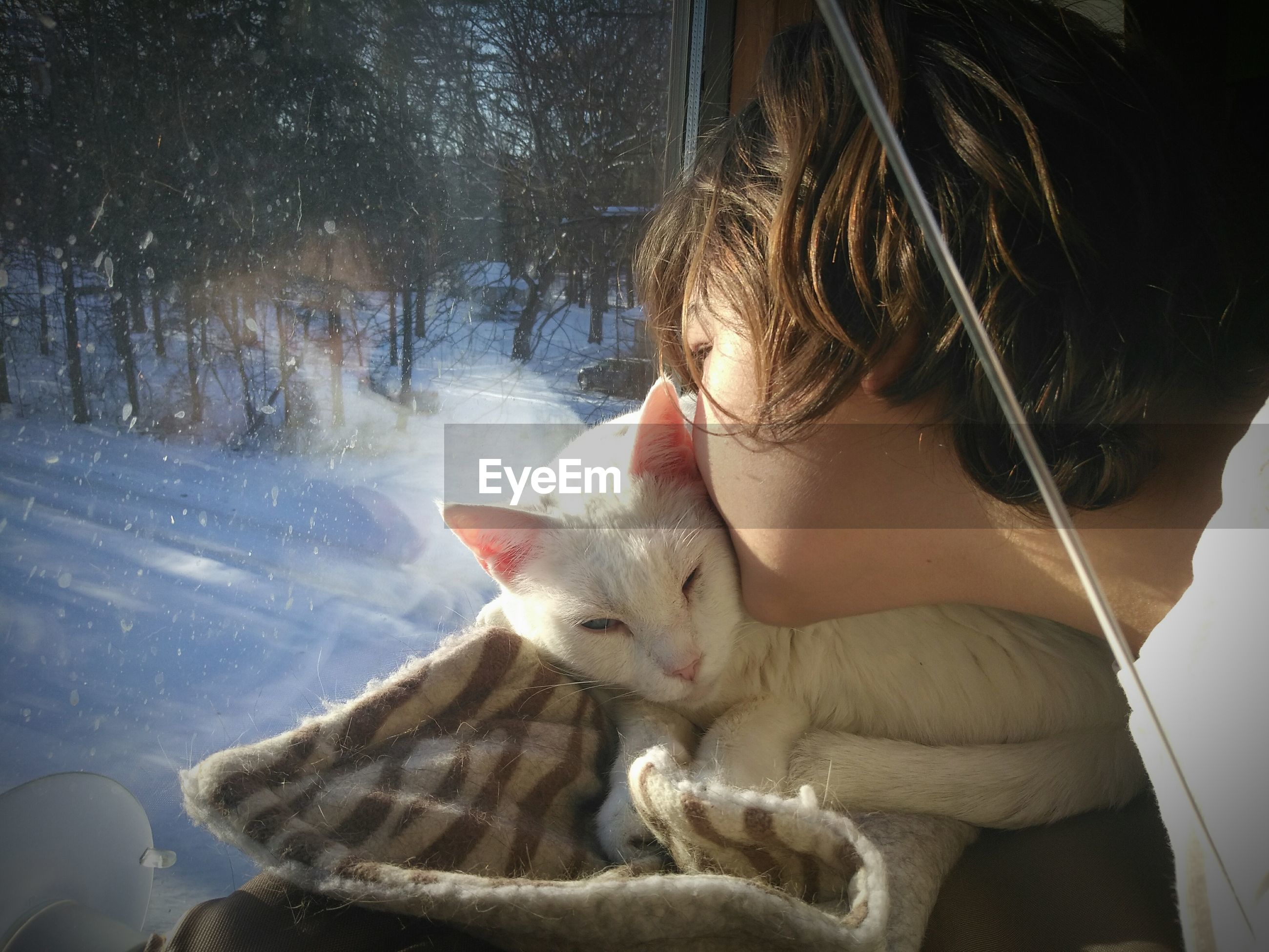 Close-up of girl kissing cat while looking through window during winter