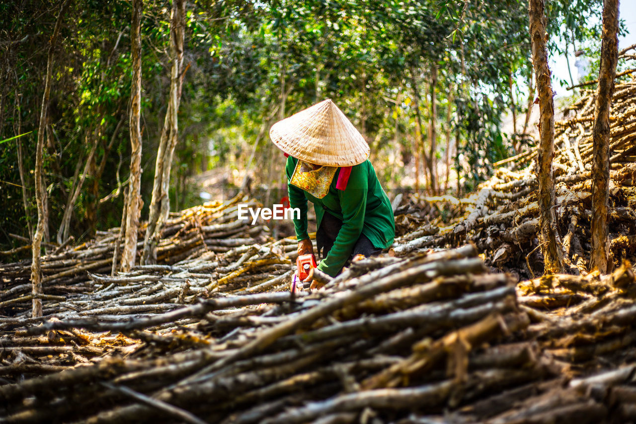 Person Wearing Asian Style Conical Hat Collecting Firewood At Forest