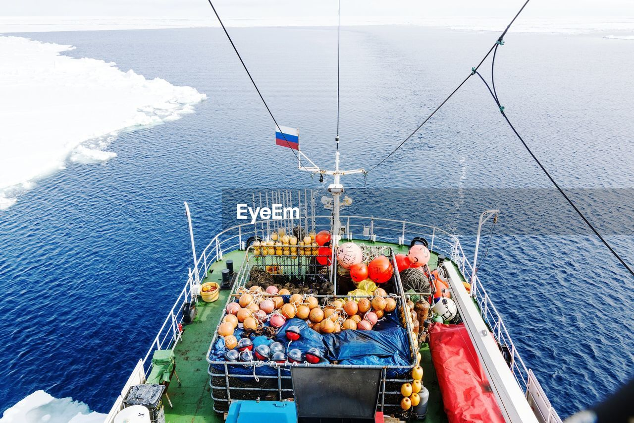 HIGH ANGLE VIEW OF FRUIT IN SEA
