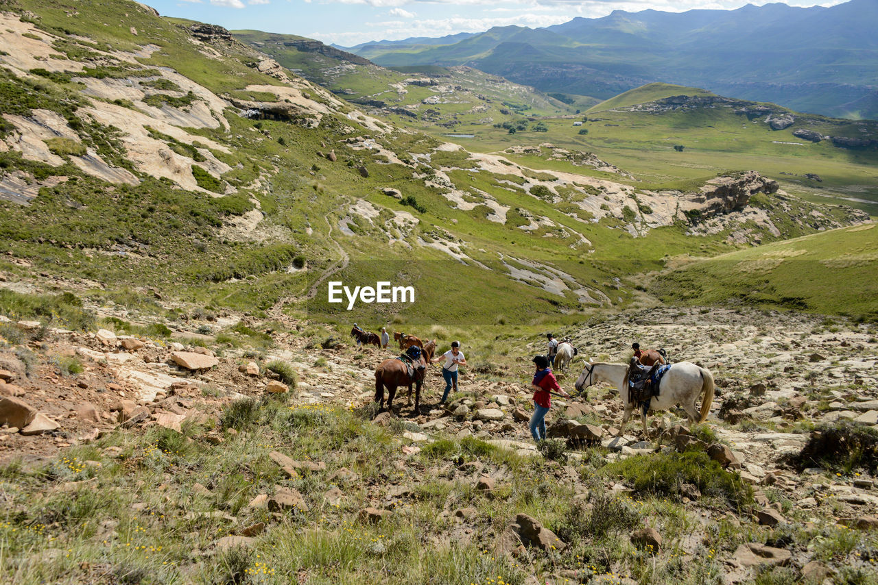People with horses on hill during sunny day
