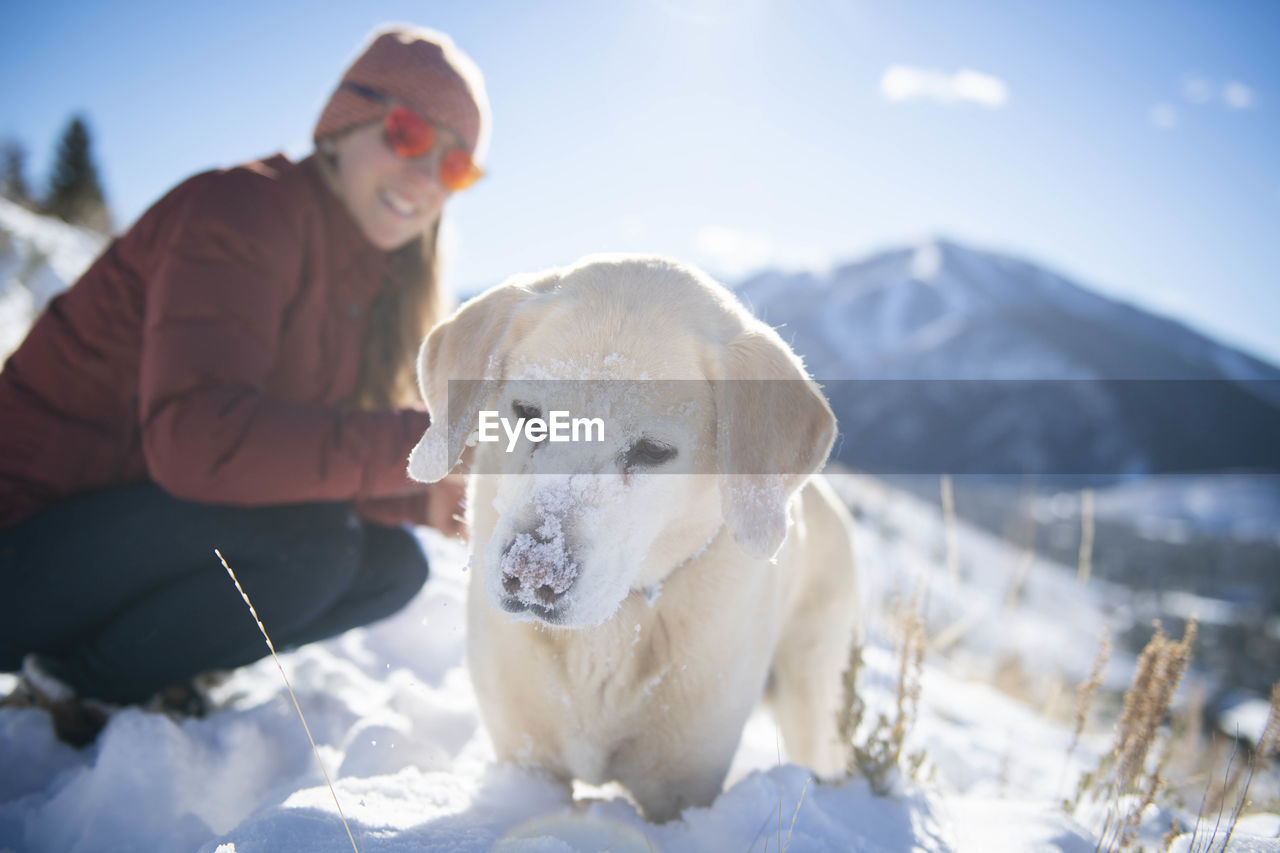 VIEW OF A DOG ON SNOW