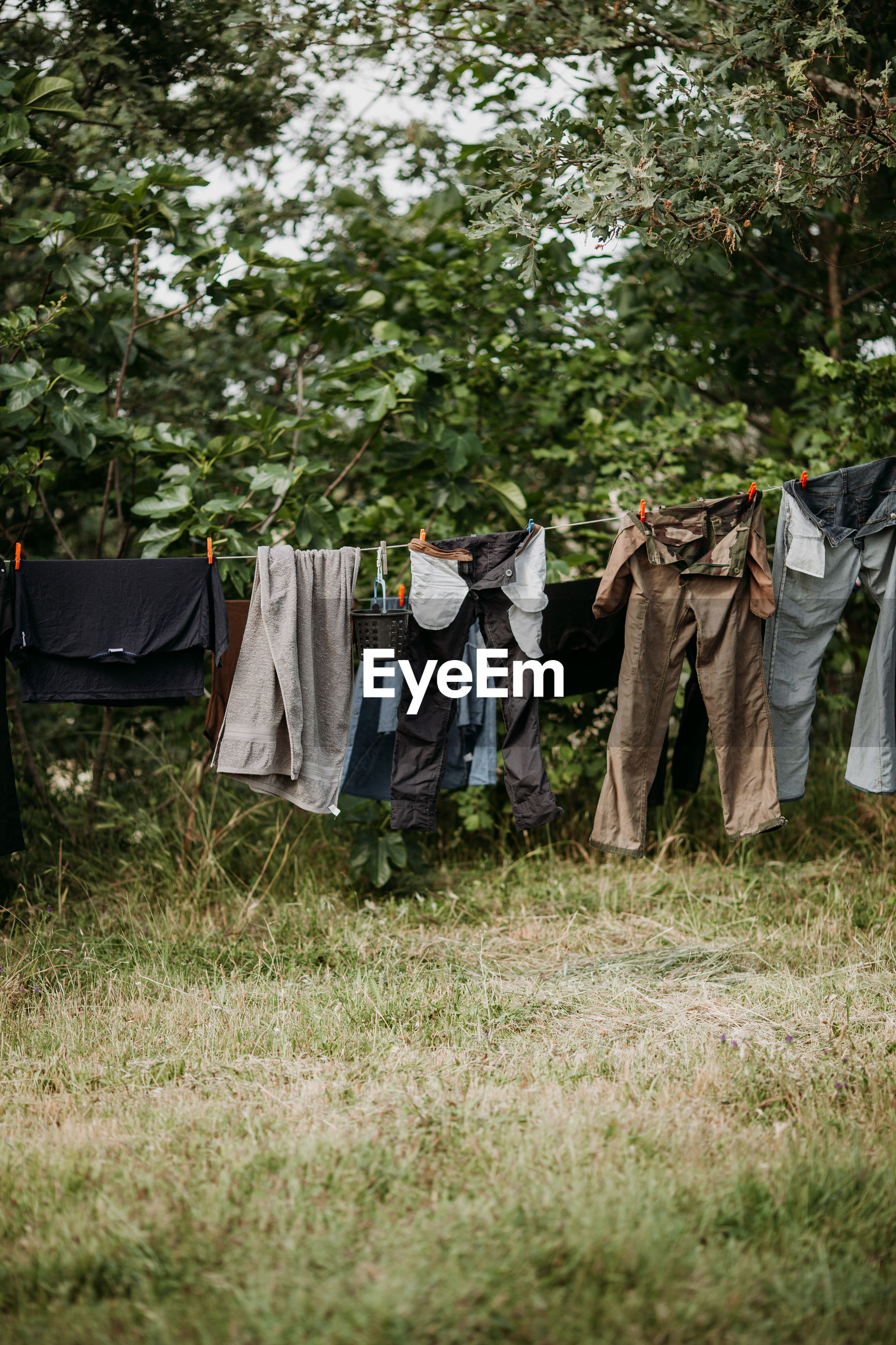Clothes drying over field against trees
