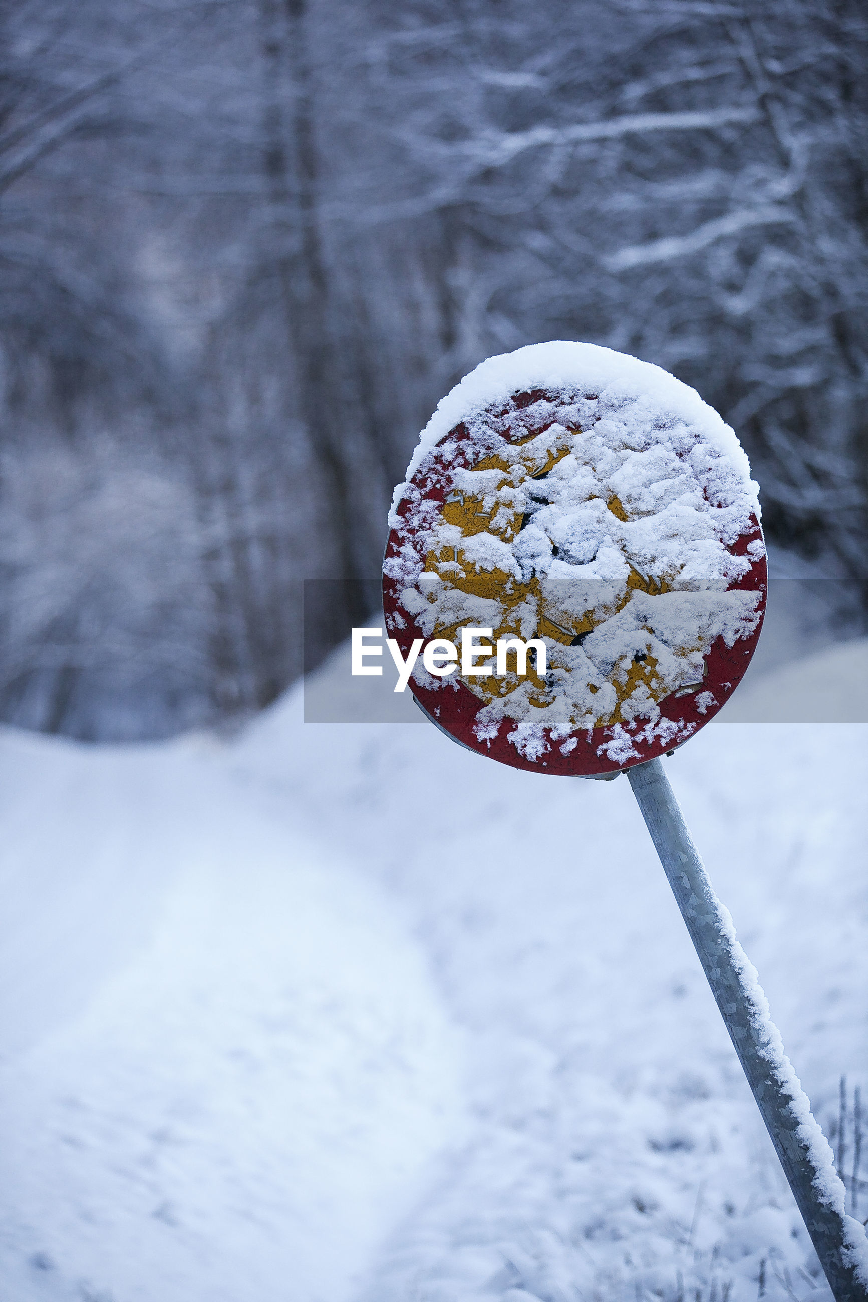 CLOSE-UP OF ICE CREAM AGAINST SNOW COVERED