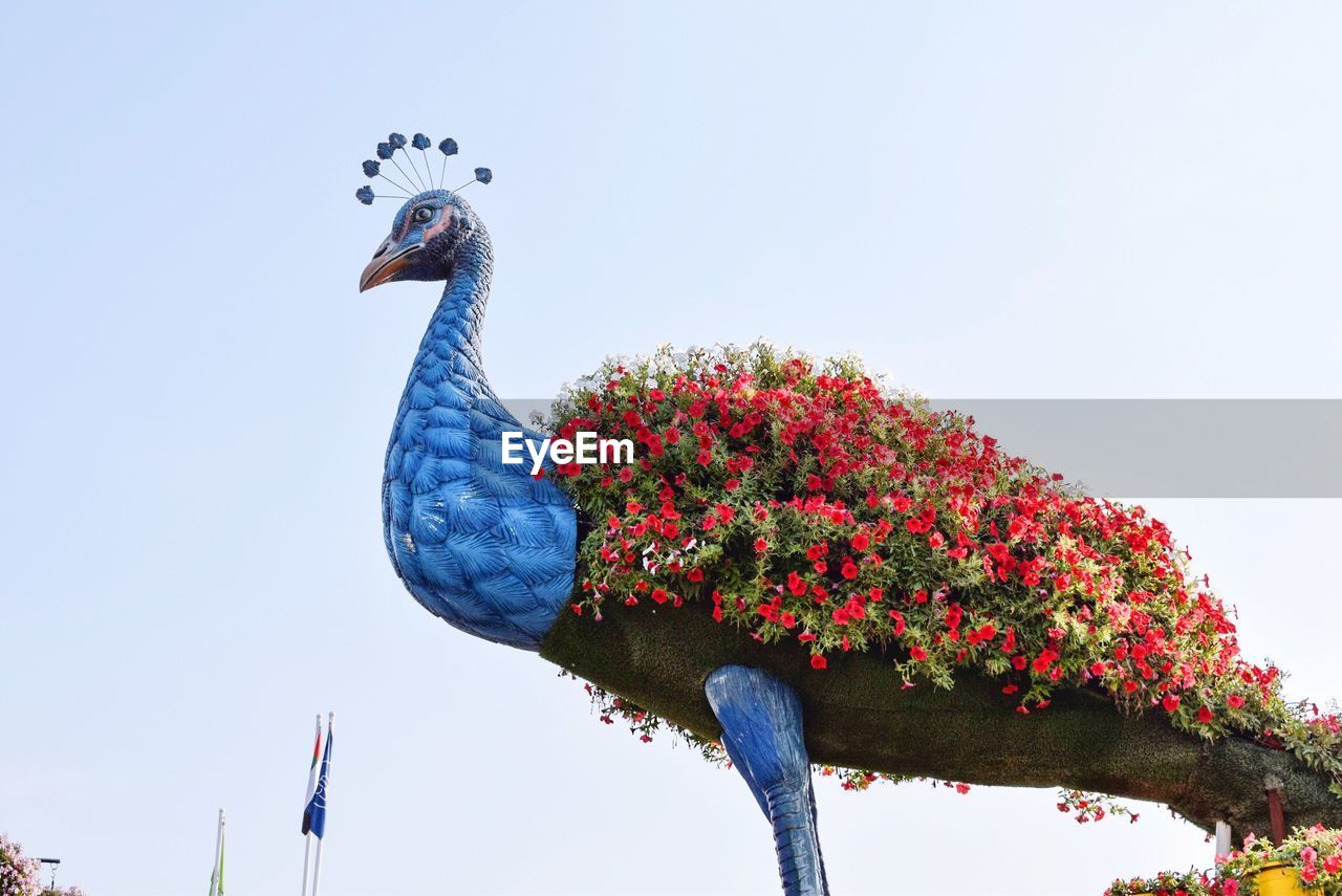 sky, bird, animal, animal themes, vertebrate, animal wildlife, animals in the wild, one animal, nature, low angle view, plant, day, clear sky, no people, blue, flower, tree, flowering plant, beauty in nature, growth