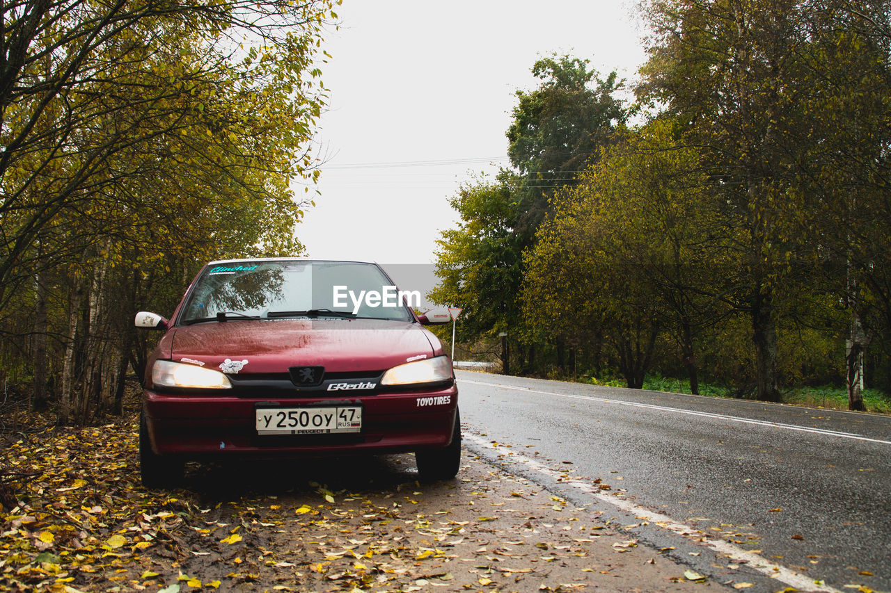 tree, transportation, car, mode of transport, road, land vehicle, no people, day, outdoors, nature, sky