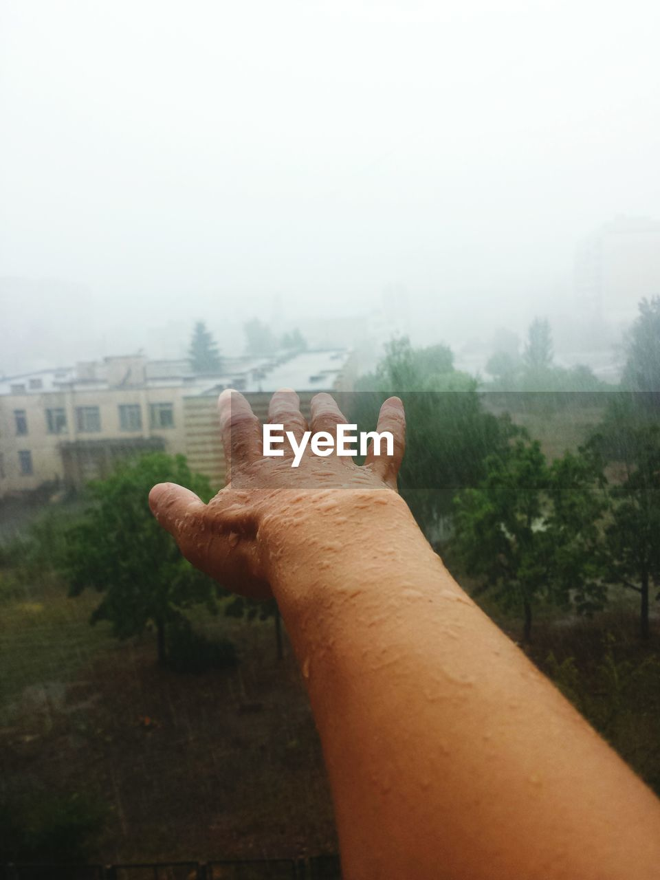 human hand, human body part, human finger, one person, fog, real people, men, day, outdoors, tree, nature, close-up, sky, people