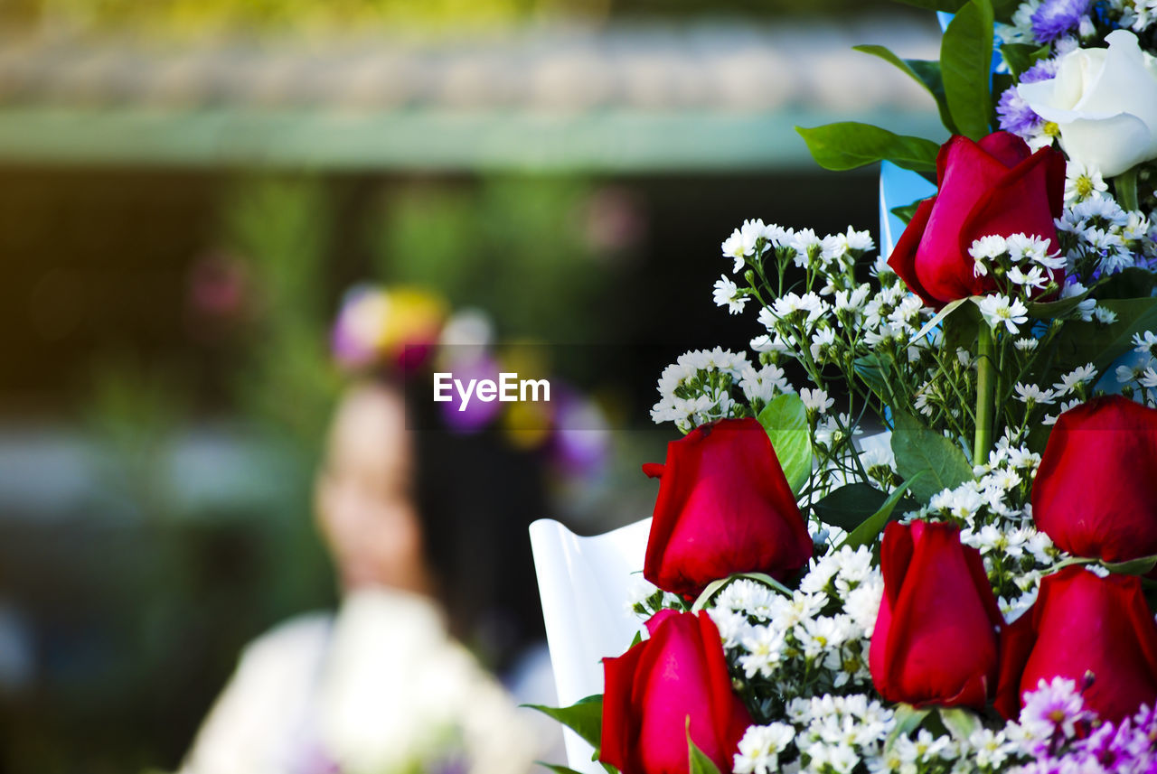 flowering plant, flower, plant, freshness, beauty in nature, red, nature, vulnerability, day, focus on foreground, fragility, petal, flower head, close-up, inflorescence, growth, selective focus, outdoors, one person, rose - flower, flower arrangement, bouquet