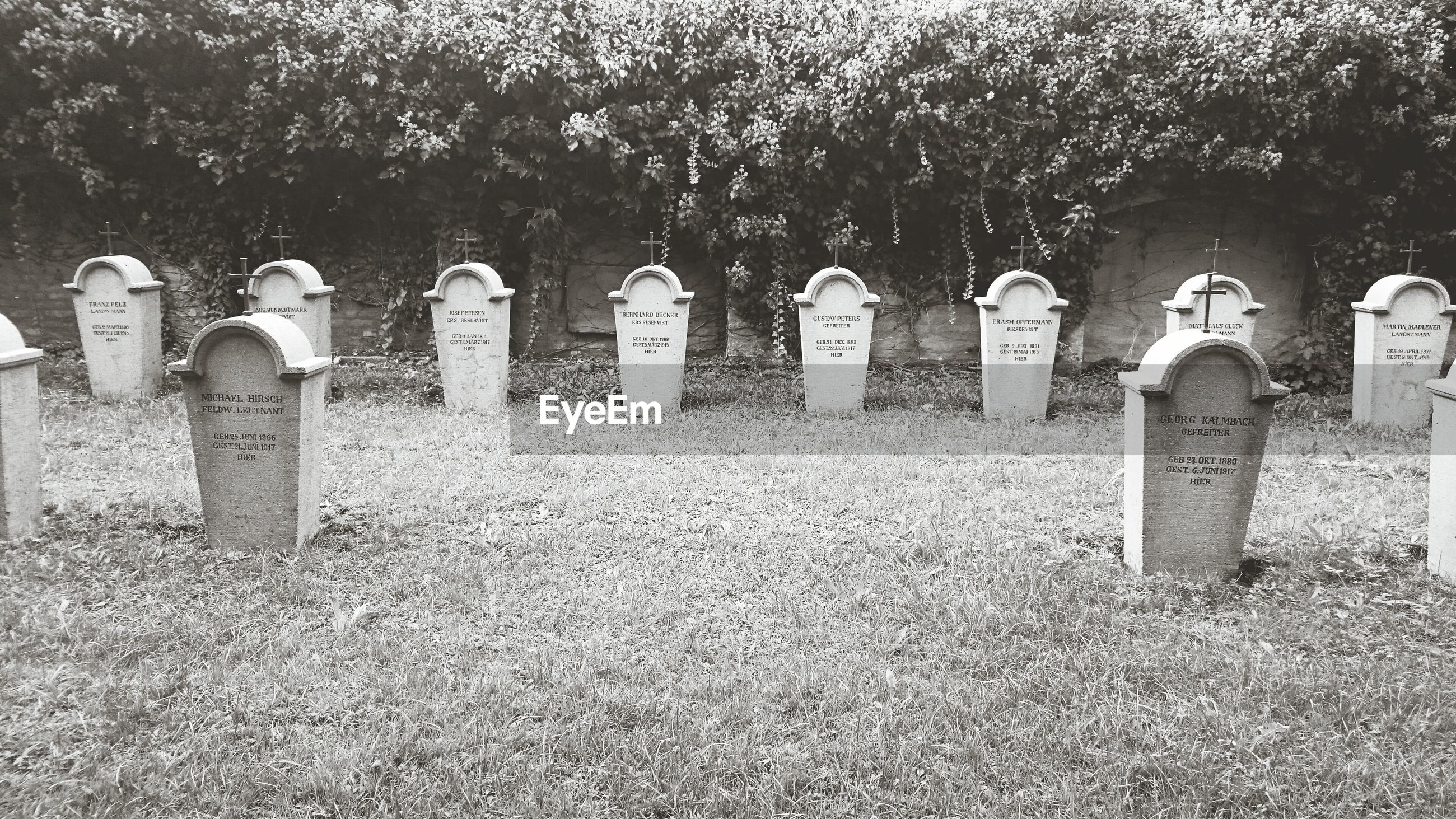 cemetery, tombstone, memorial, graveyard, tree, day, outdoors, no people, gravestone, grass, tranquility, nature, landscape
