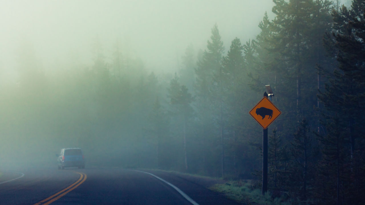 Road sign in foggy weather
