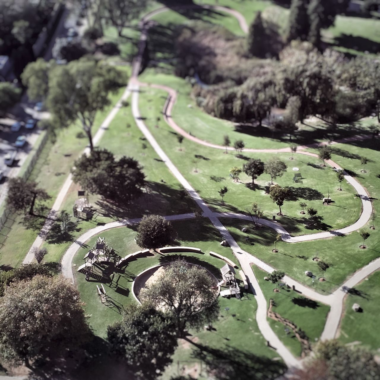 Aerial View Of Walkway In Park