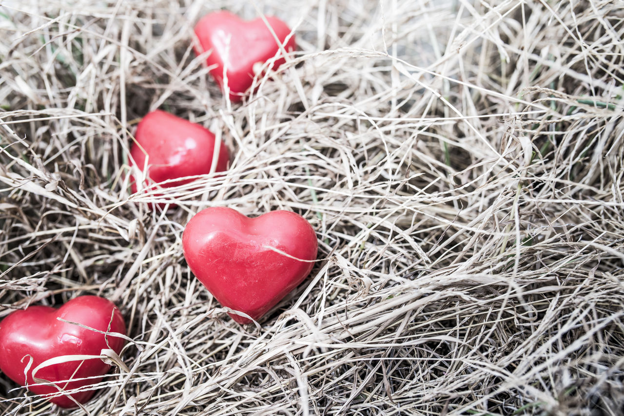 red, food, food and drink, heart shape, close-up, no people, nature, plant, celebration, freshness, high angle view, egg, fruit, positive emotion, love, healthy eating, easter egg, emotion, holiday, holiday - event