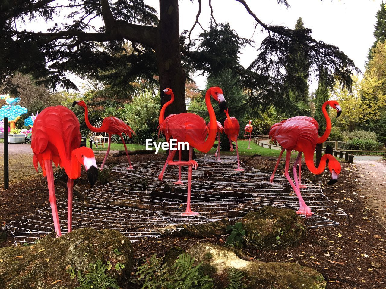 tree, animal themes, bird, red, outdoors, day, animals in the wild, no people, nature, flamingo