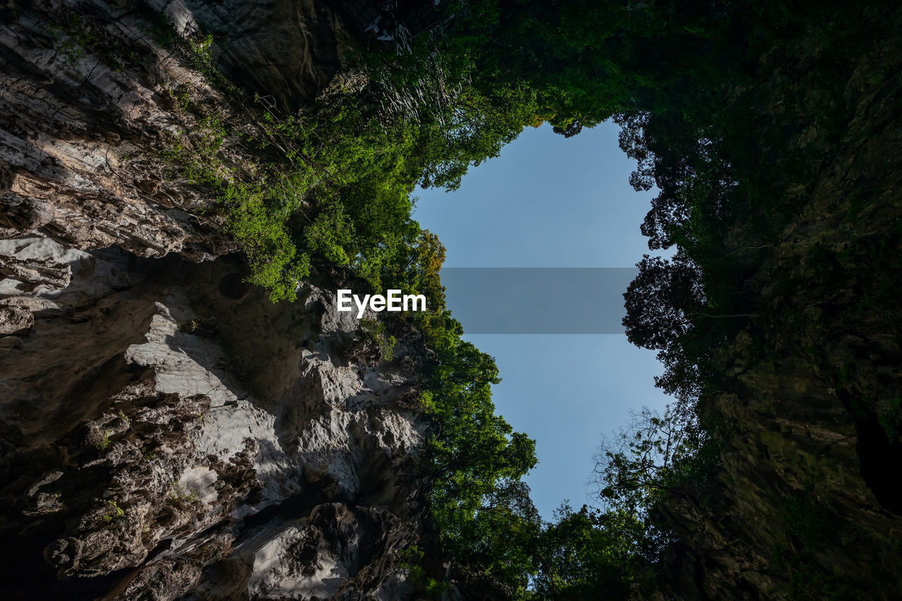 plant, tree, rock, rock - object, beauty in nature, growth, nature, low angle view, rock formation, solid, tranquility, no people, scenics - nature, sky, day, tranquil scene, non-urban scene, green color, land, outdoors, formation, eroded