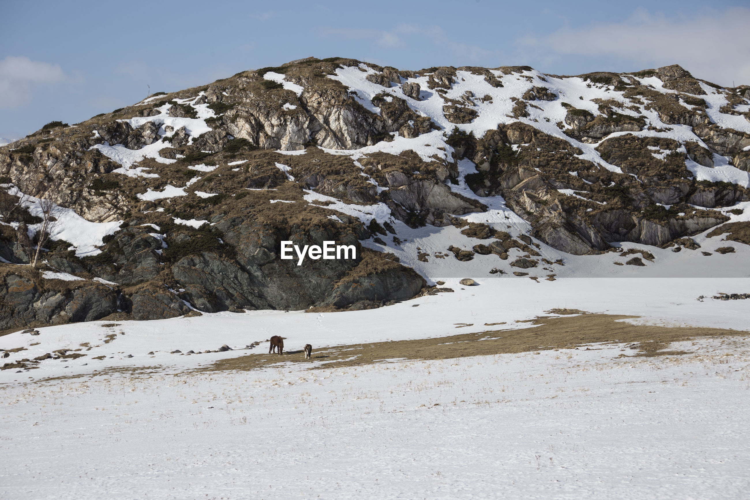 View of mountain during winter