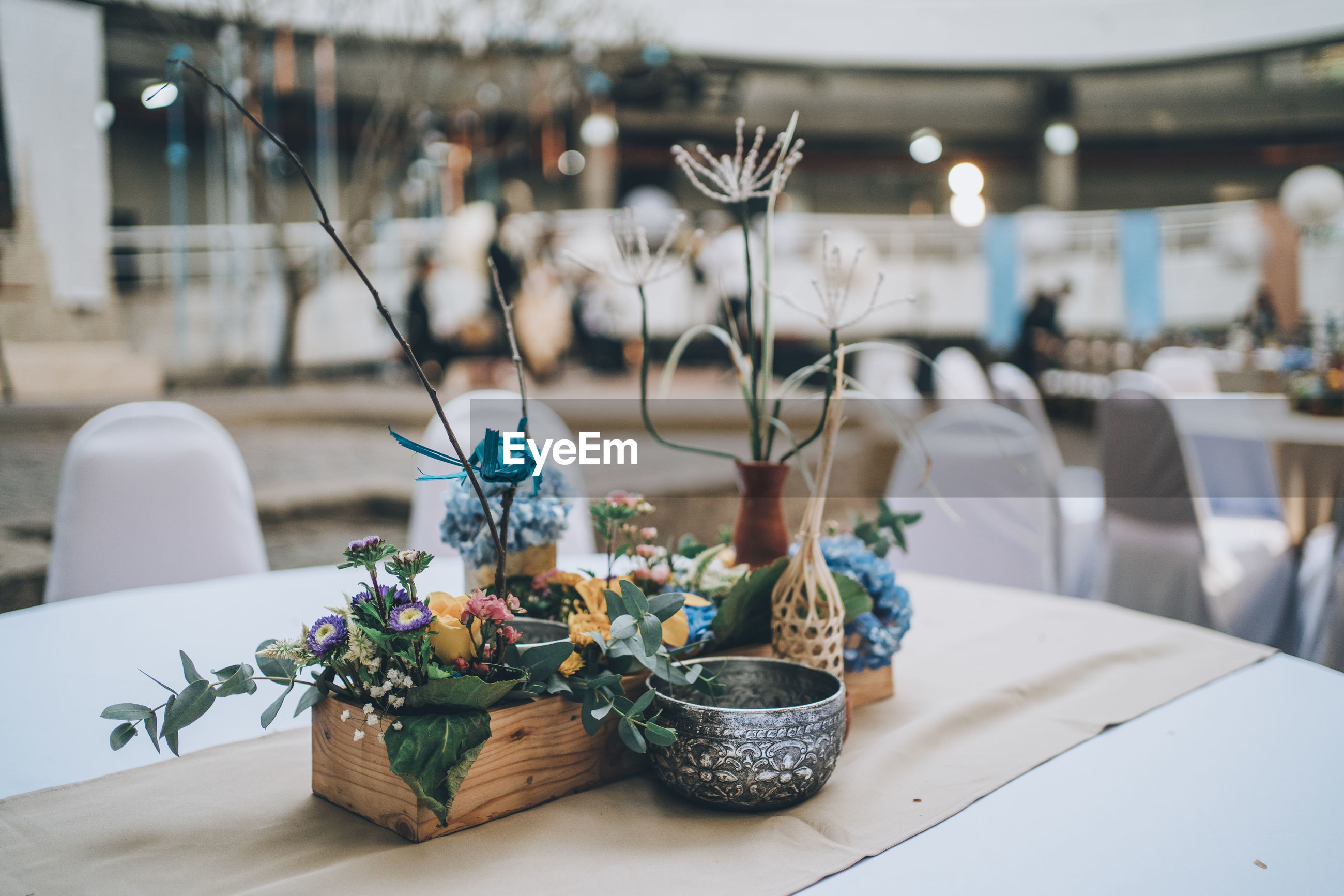 CLOSE-UP OF POTTED PLANTS ON TABLE AGAINST WALL