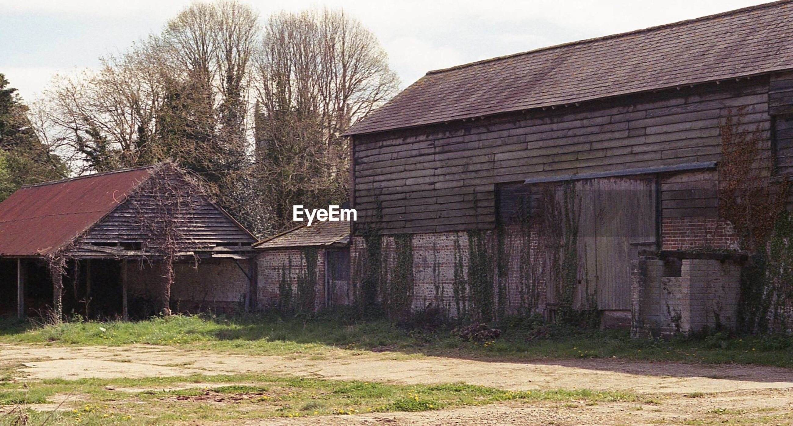 built structure, architecture, building exterior, abandoned, day, no people, house, barn, sky, tree, outdoors, rural scene, field, agricultural building, farmhouse, clear sky