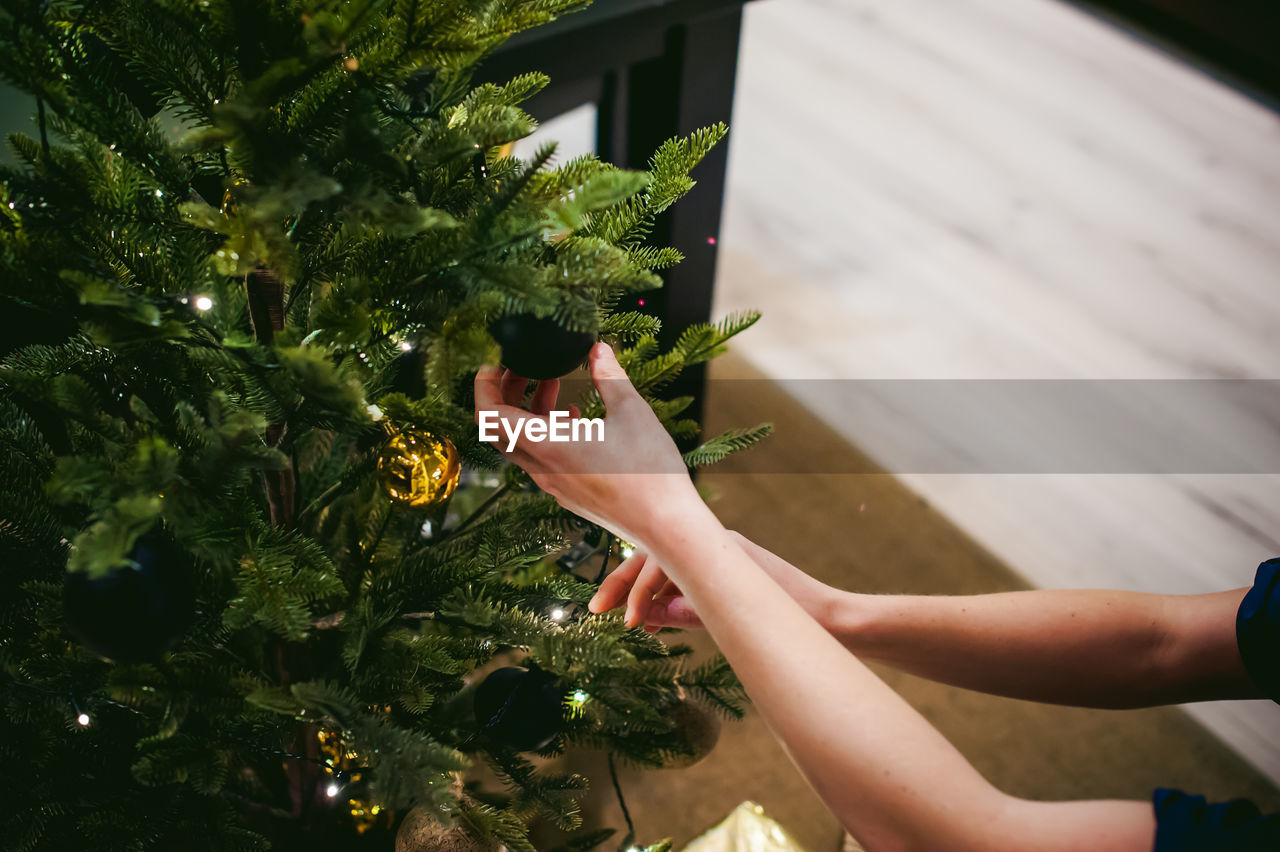 Cropped Hands Of Woman Holding Christmas Tree
