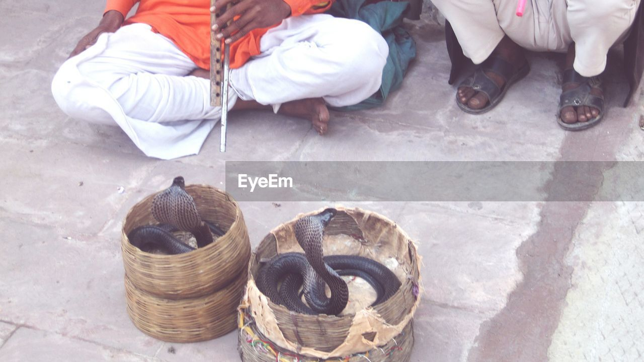 Low section of snake charmers in front of cobra in baskets