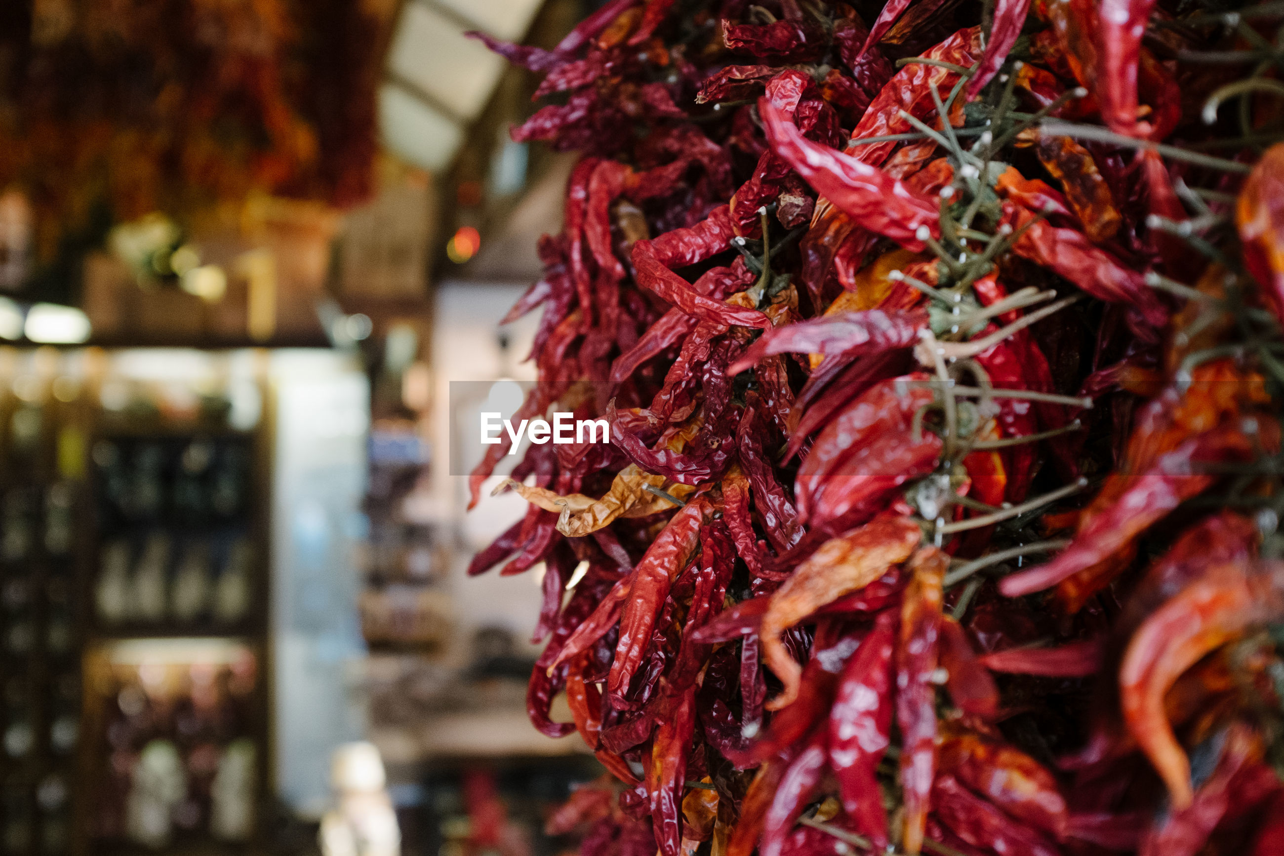 CLOSE-UP OF RED CHILI PEPPER FOR SALE IN MARKET