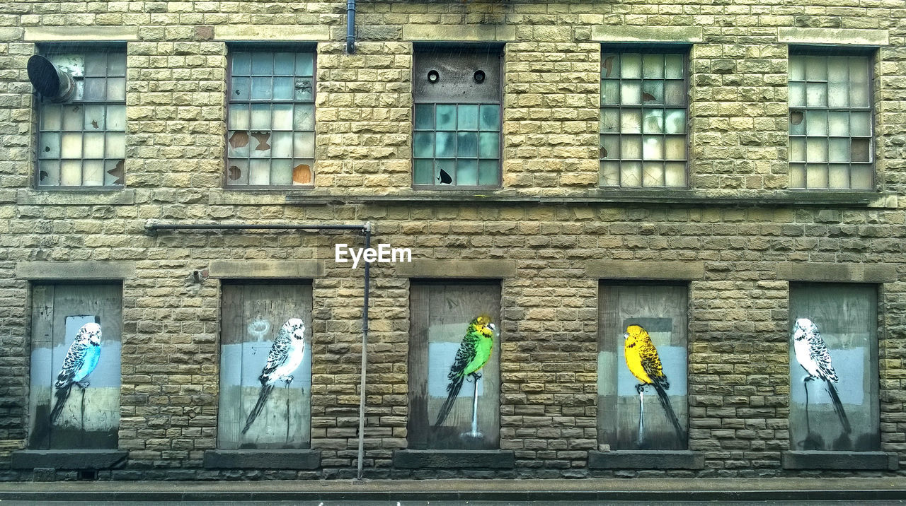 building exterior, window, architecture, built structure, human representation, day, men, real people, yellow, outdoors, people