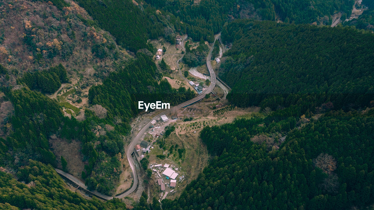 scenics - nature, environment, road, tree, beauty in nature, high angle view, aerial view, plant, landscape, day, transportation, nature, mountain, no people, tranquility, tranquil scene, non-urban scene, outdoors, land, forest