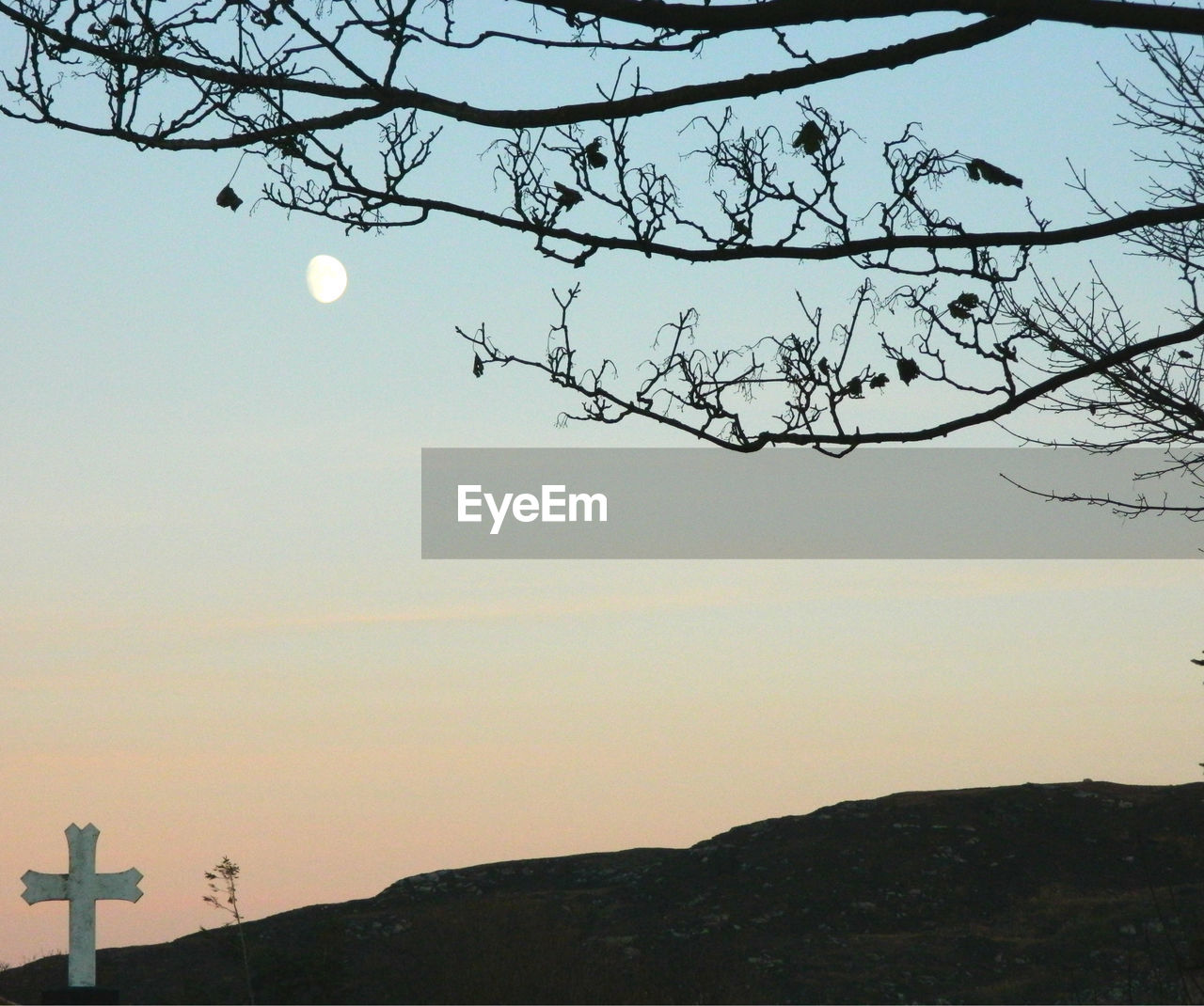 moon, nature, sky, beauty in nature, tree, tranquility, no people, outdoors, scenics, silhouette, bare tree, sunset, clear sky, branch, day, astronomy