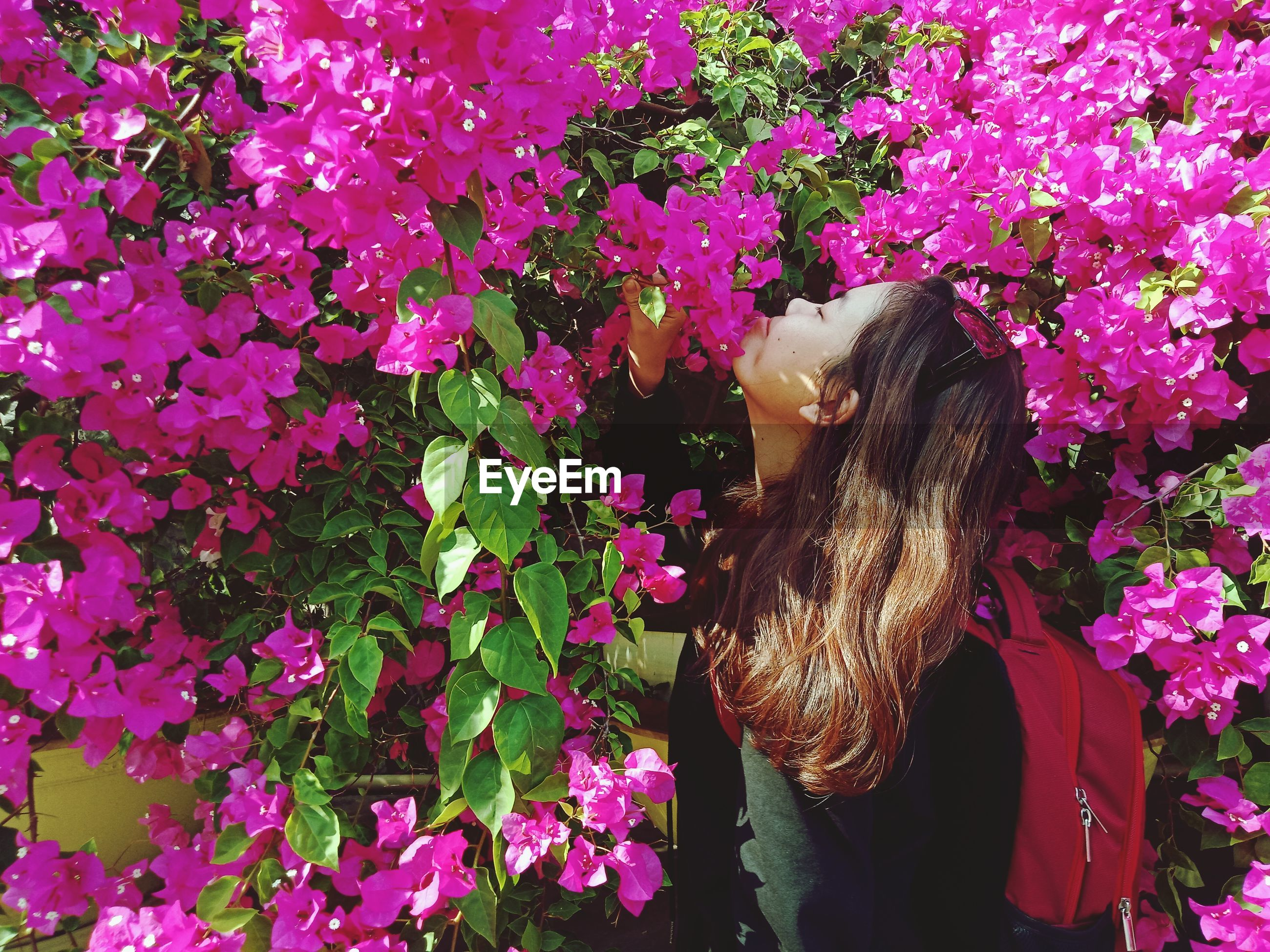 Side view of woman smelling pink flowers on plants in park