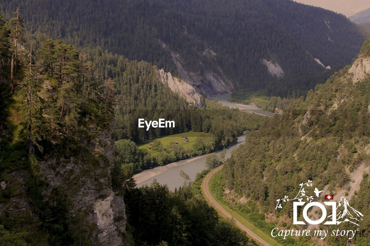 tree, road, high angle view, transportation, mountain, nature, scenics, beauty in nature, winding road, tranquility, day, mountain road, road sign, forest, no people, outdoors