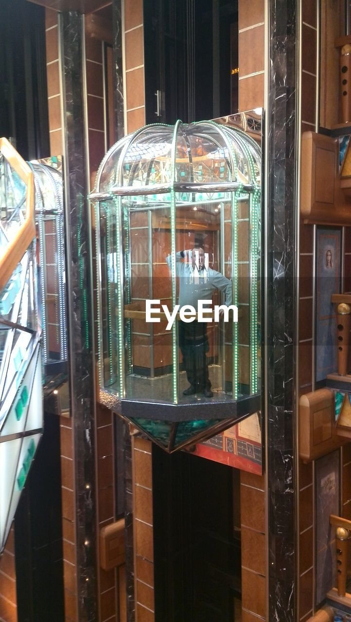 transparent, glass - material, window, indoors, reflection, retail, store, no people, day, animal themes, close-up, architecture