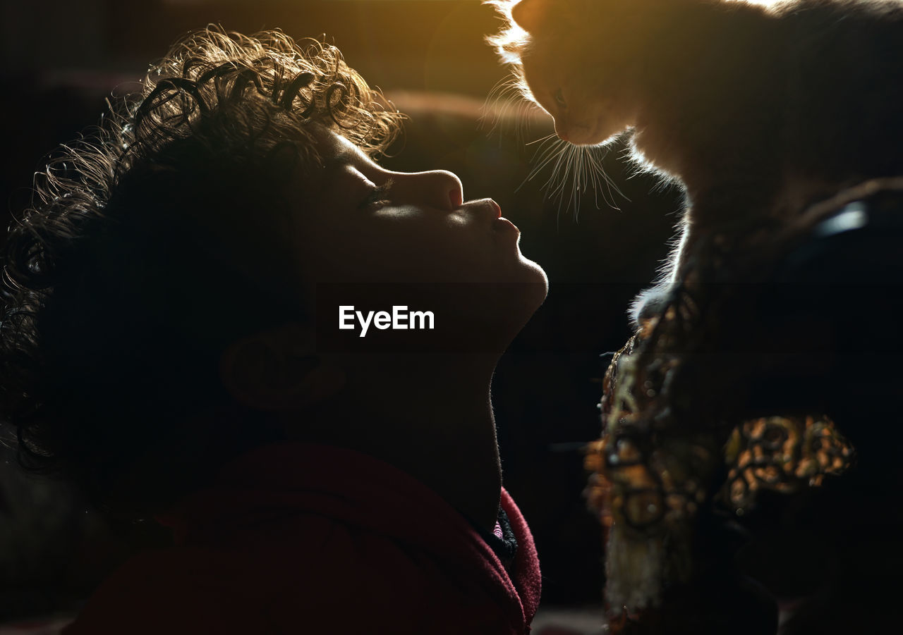 Close-up of boy kissing cat in darkroom