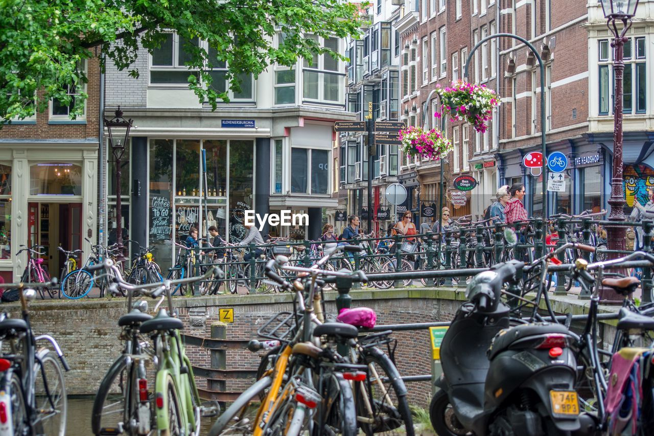 bicycle, transportation, building exterior, mode of transportation, city, architecture, land vehicle, street, built structure, crowd, group of people, plant, large group of people, day, tree, nature, real people, building, outdoors