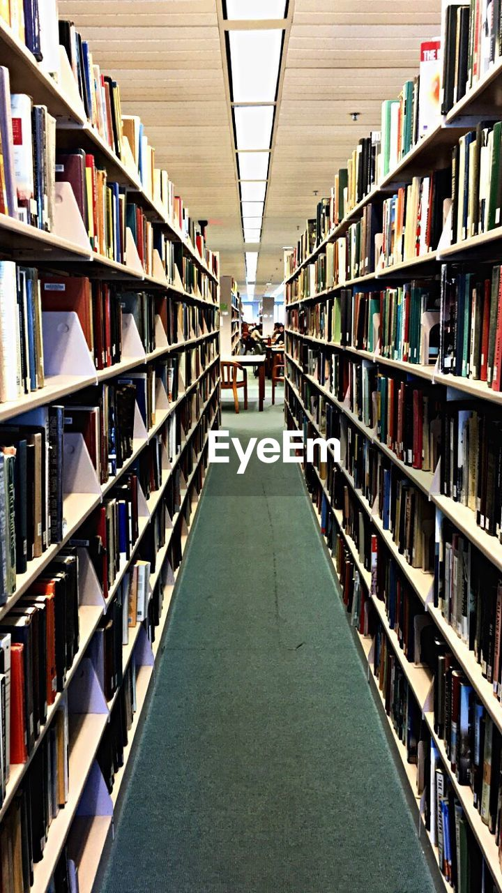 bookshelf, shelf, book, library, indoors, education, choice, in a row, literature, large group of objects, arrangement, university, no people, day