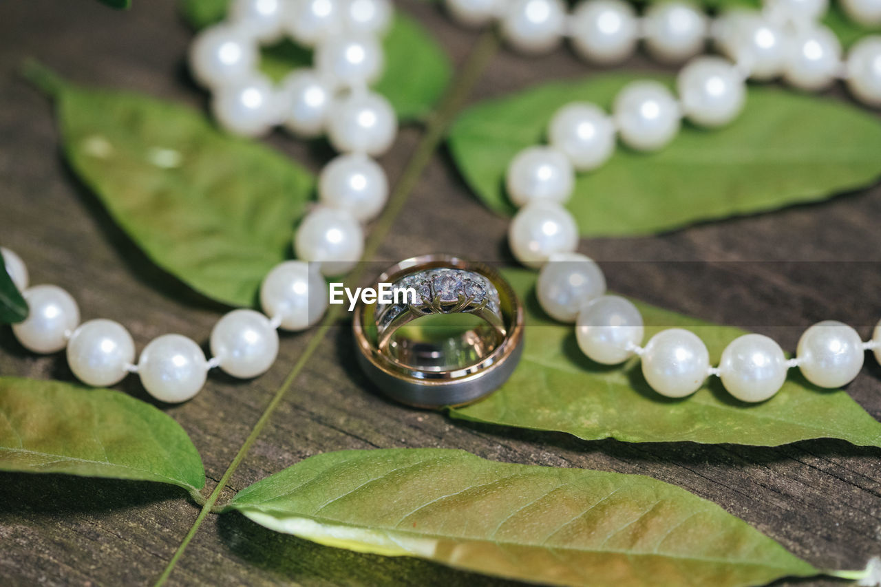 close-up, plant part, leaf, selective focus, jewelry, green color, no people, plant, nature, drop, water, day, personal accessory, table, pearl jewelry, growth, wealth, focus on foreground, luxury, purity