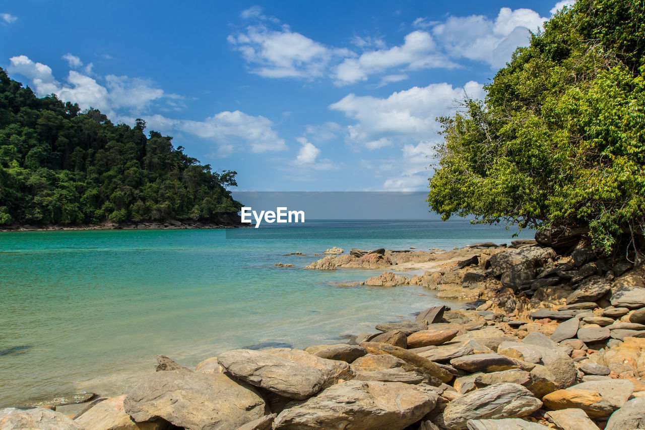 sea, nature, sky, beauty in nature, tree, rock - object, water, scenics, cloud - sky, tranquility, day, beach, outdoors, no people
