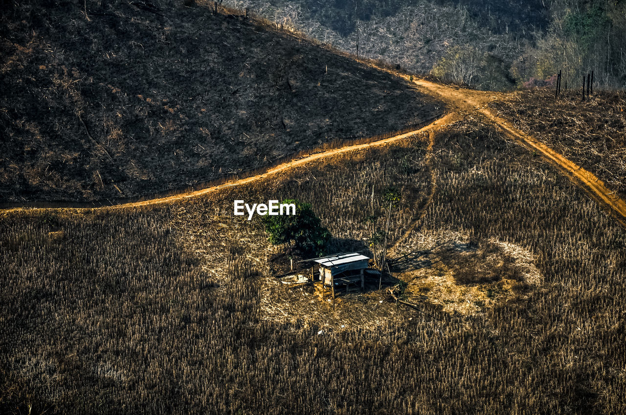High Angle View Of Burnt Forest