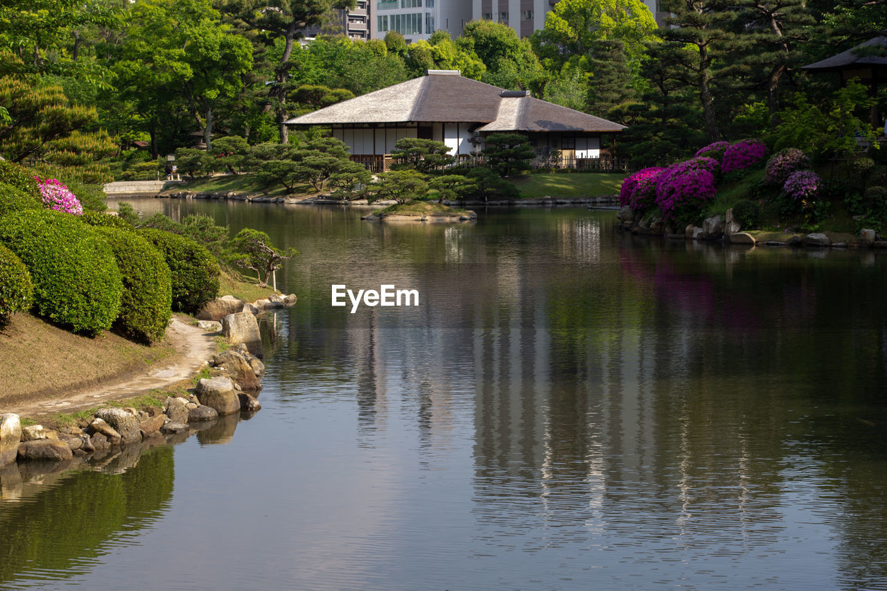 plant, water, reflection, tree, nature, beauty in nature, lake, tranquility, no people, tranquil scene, architecture, gazebo, waterfront, built structure, growth, garden, park, formal garden, day, outdoors, purple, ornamental garden