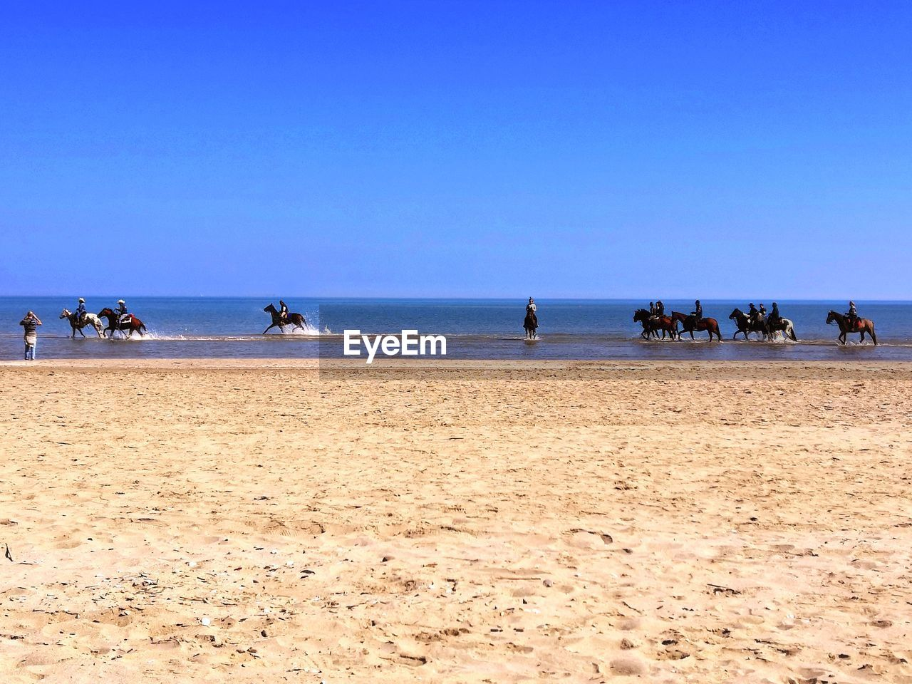 beach, land, sea, water, sky, group of people, horizon over water, sand, horizon, copy space, clear sky, scenics - nature, real people, day, beauty in nature, large group of people, men, blue, nature, outdoors