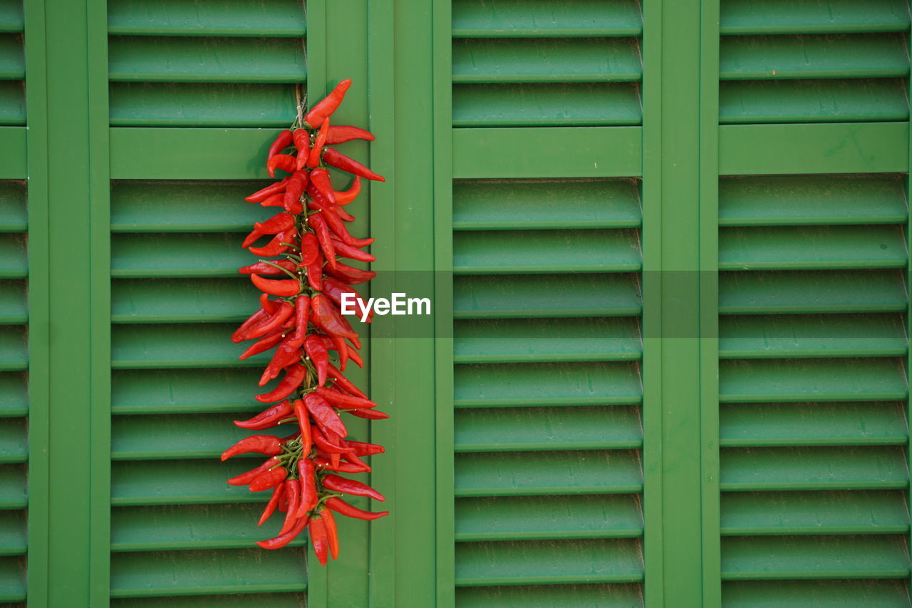 Red Chili Peppers Hanging On Green Window