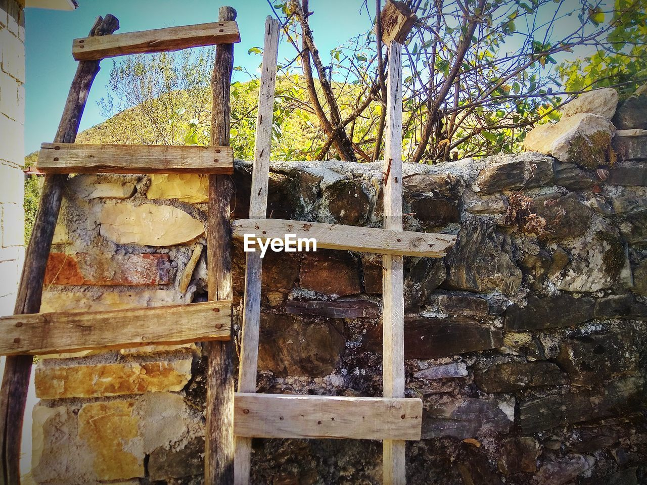 no people, day, old, tree, built structure, wood - material, nature, weathered, wall - building feature, architecture, wall, outdoors, rusty, plant, abandoned, low angle view, stone wall, metal, damaged, obsolete, deterioration, ladder, ruined
