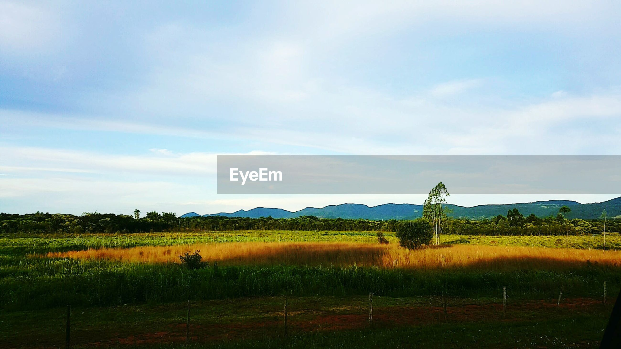 landscape, sky, tranquil scene, field, tranquility, beauty in nature, scenics, mountain, nature, rural scene, grass, cloud - sky, growth, cloud, horizon over land, non-urban scene, plant, mountain range, remote, idyllic, grassy, no people, hill, outdoors, day, green color, non urban scene, cloudy, blue