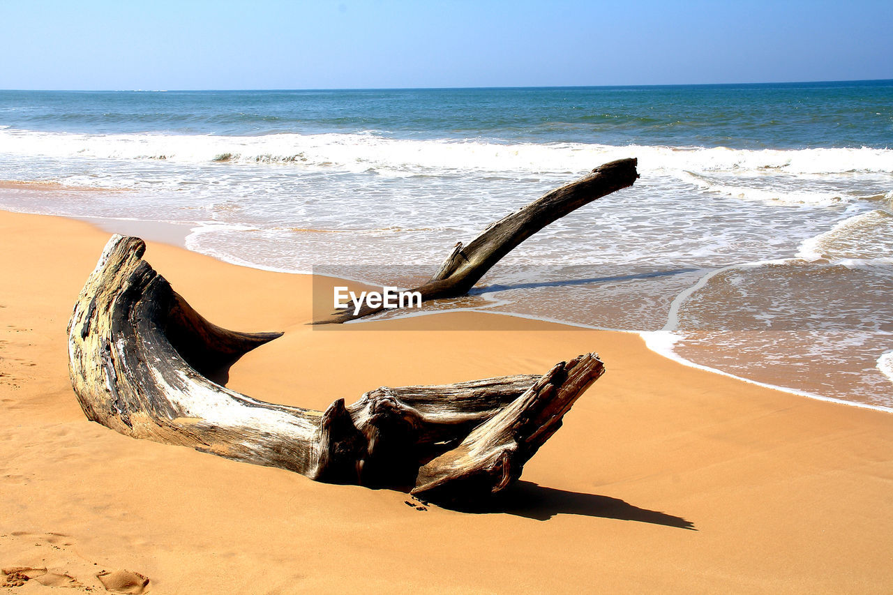 Driftwood On Beach Against Sky