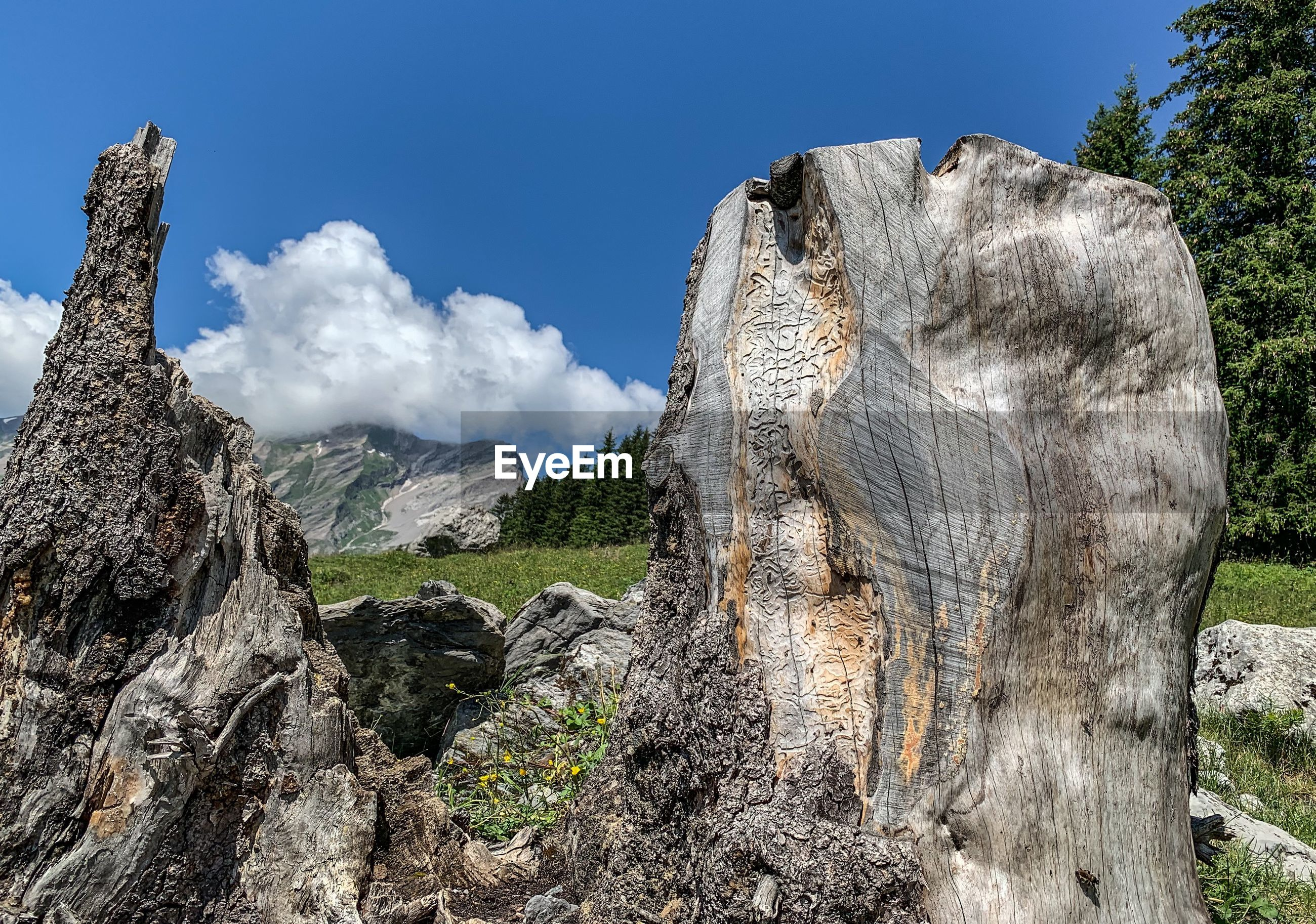 LOW ANGLE VIEW OF ROCK FORMATION ON LAND AGAINST SKY