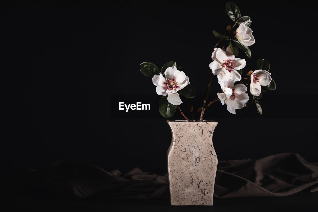Magnolias in an elegant stone vase, used for funerals and funeral service against black background