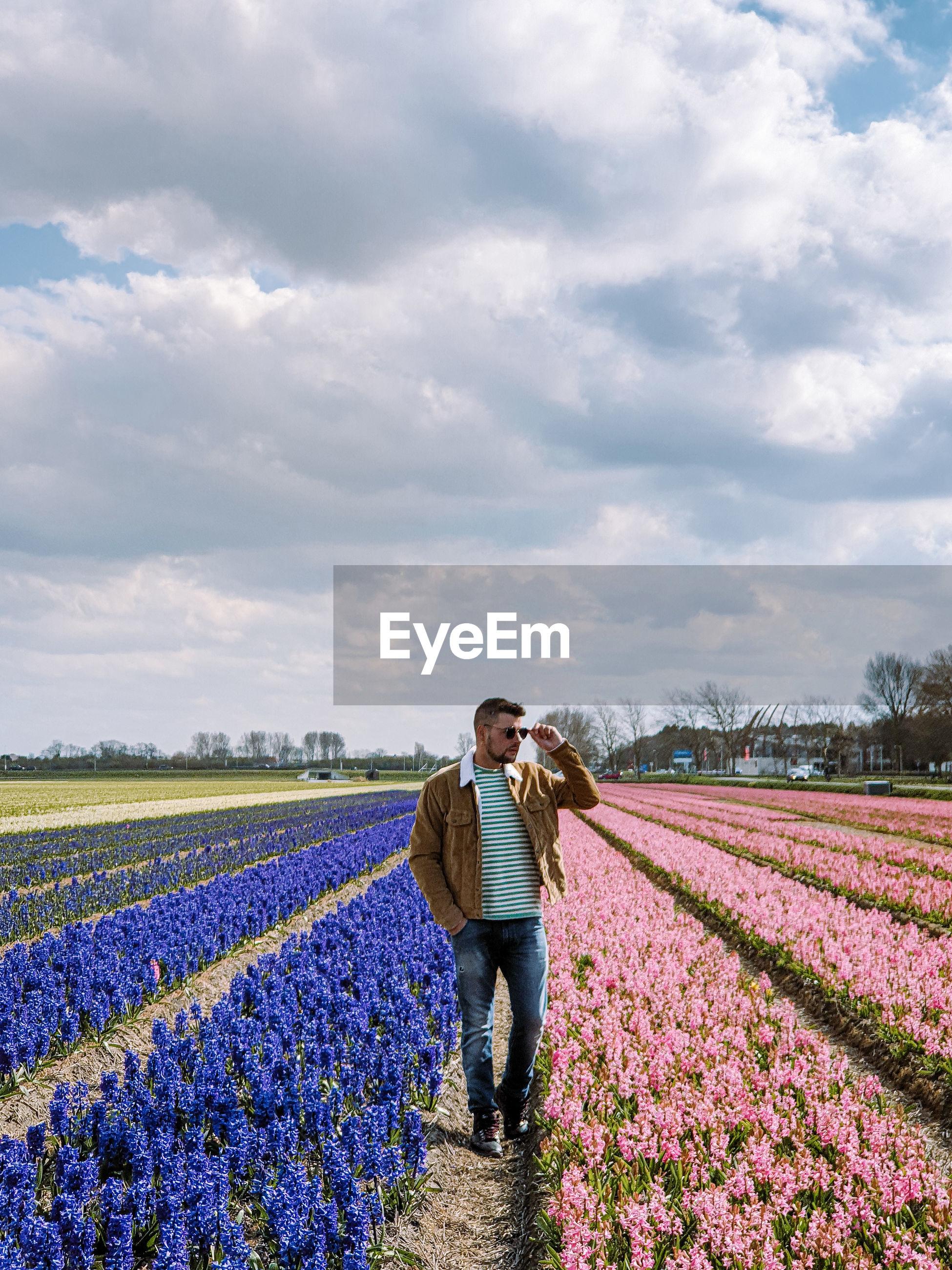 Men walking in flower field in the netherlands